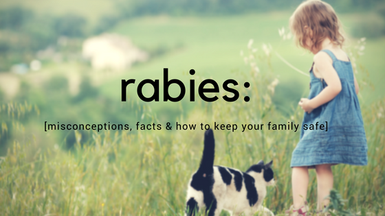 Rabies: Misconceptions, Facts, & How to Keep Your Family Safe